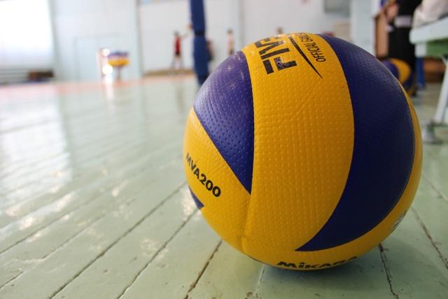 voleiboll