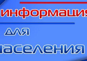 Началось выдвижение кандидатур на присвоение звания «Почетный гражданин Островского района»