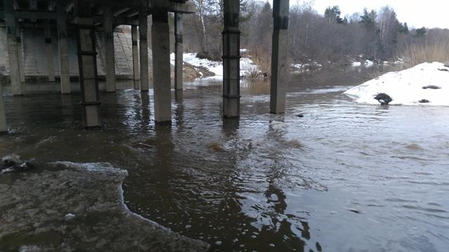 За сутки на реке Мера в Островском районе уровень воды резко повысился